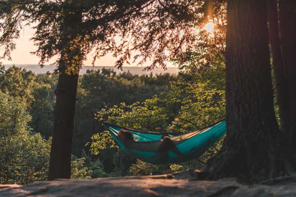 Hammock fastened with trees